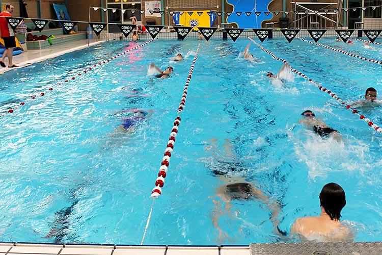 Tweeka - zwemmen voor masters