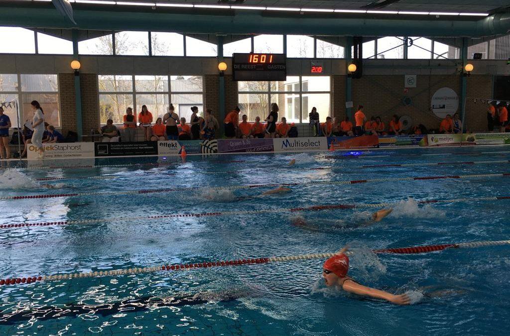 Uitstekende handhaving van zwemmers MZ&PC de Reest in D1 competitie !